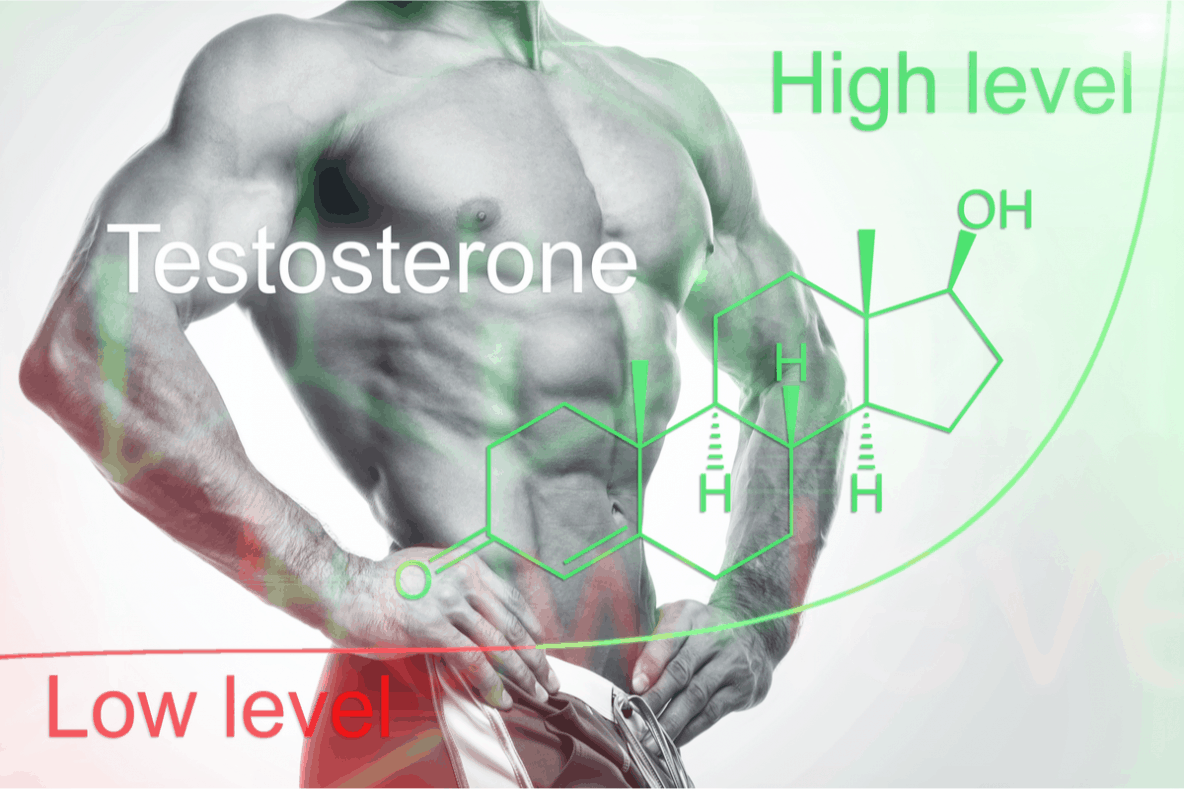 Got Low Testosterone? Feel Tired? Can Testosterone Boosters Help You?
